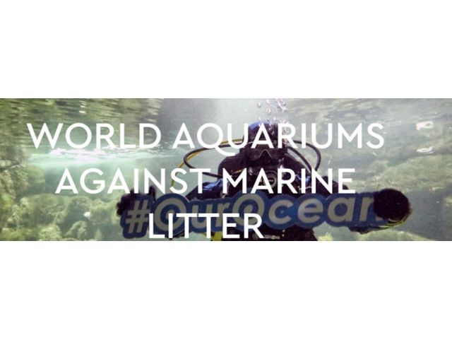"Oceanopolis joins the ""World Aquariums Against Marine Litter"" campaign"