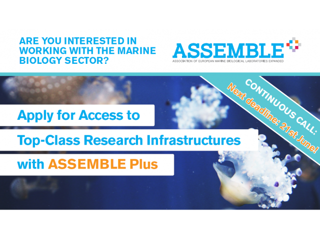 ASSEMBLE Plus: Apply for access to top-class european infrastructures in marine biology