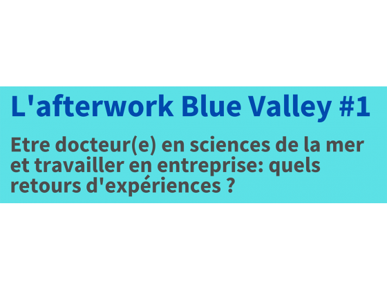 Blue Valley Afterwork #1