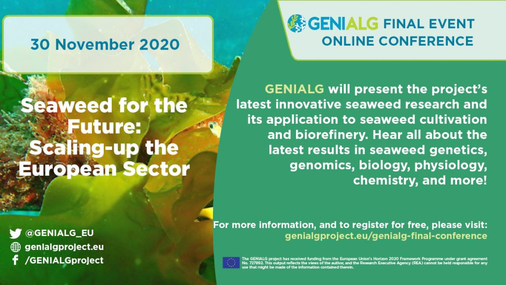 GENIALG final conference